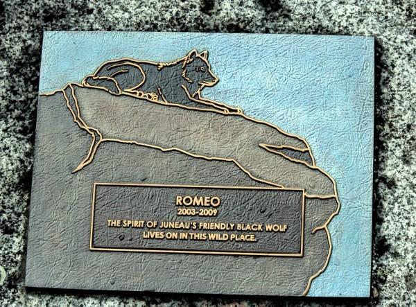 Romeo11