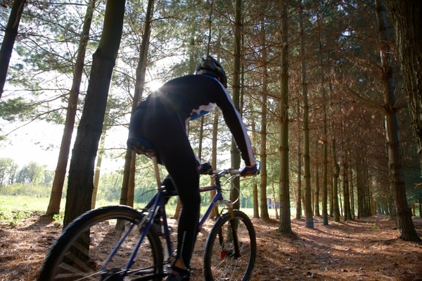 411291-mountain-bike