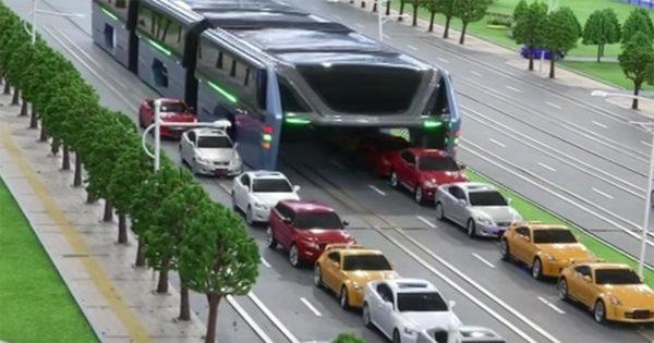 buss1