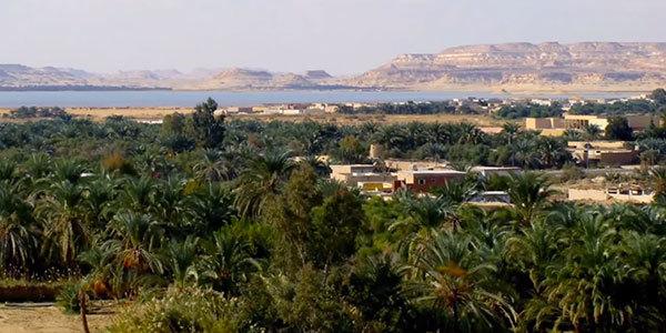 Siwa-Egypten600