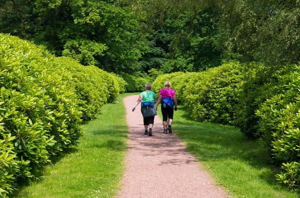 9536403-women-hiking