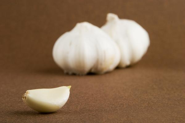 4356585-garlic
