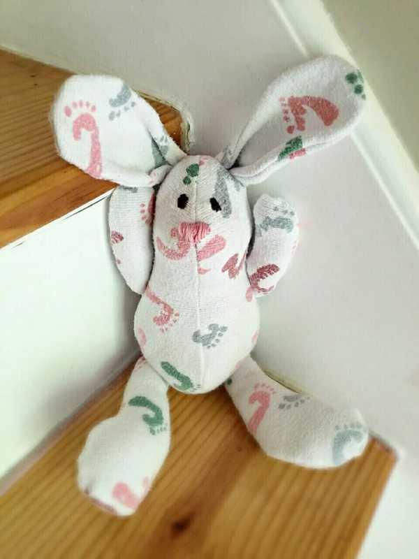 kanin1