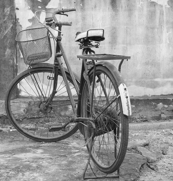 19_cykel