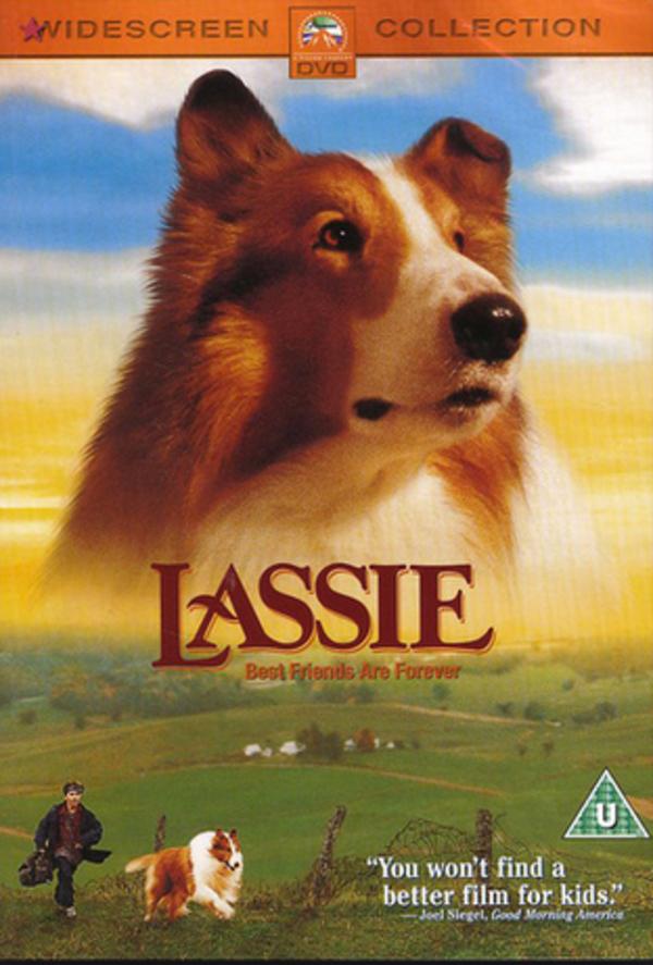36_lassie