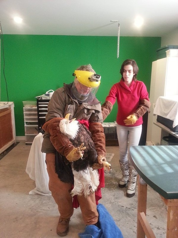 birdzilla3