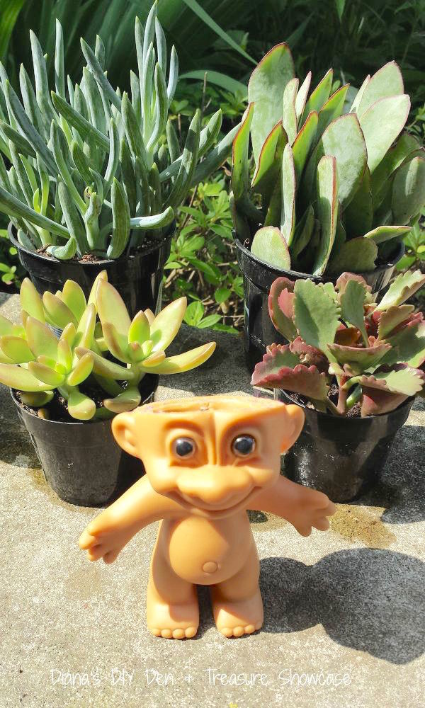 nostalgic-troll-succulent-planters-container-gardening-repurposing-upcycling-succulents-6