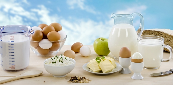 553633-dairy-products