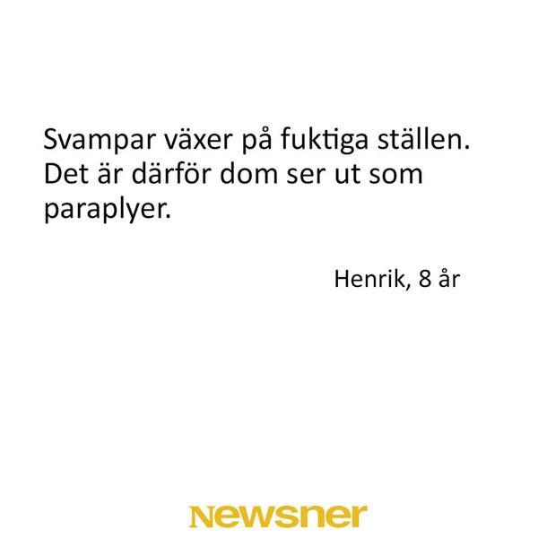 haha999