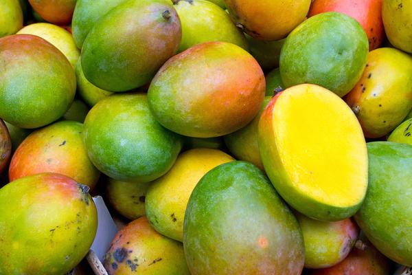 vad är mango bra för