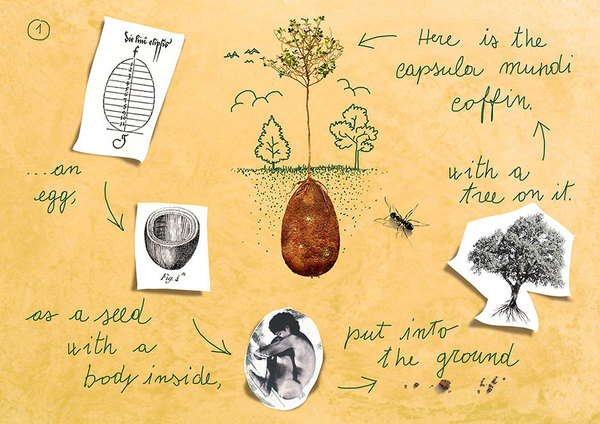 biodegradable-burial-pod-memory-forest-capsula-mundi-3