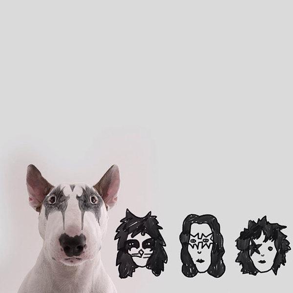 Jimmy-the-Bull-Terrier12__605
