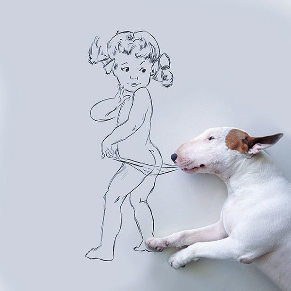 Jimmy-the-Bull-Terrier16__605