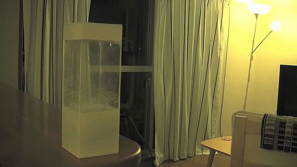 weather-forecast-box-tempescope-ken-kawamoto-1
