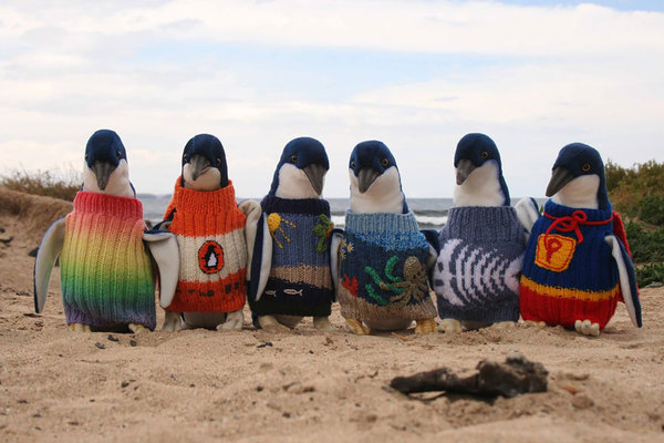 oldest-man-australia-knits-penguin-sweaters-1 (1)