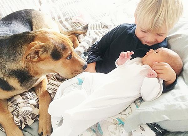 theo-beau-evangelina-evvie-baby-sister-nap-photos-jessica-shyba-8