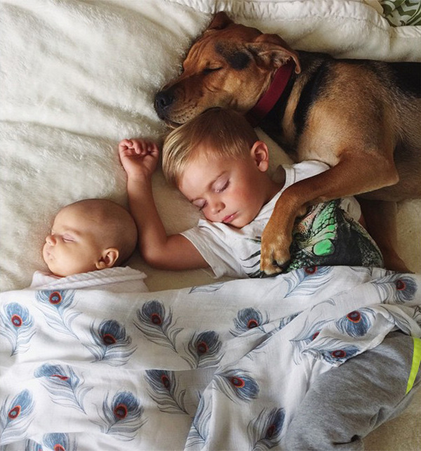 theo-beau-evangelina-evvie-baby-sister-nap-photos-jessica-shyba-4