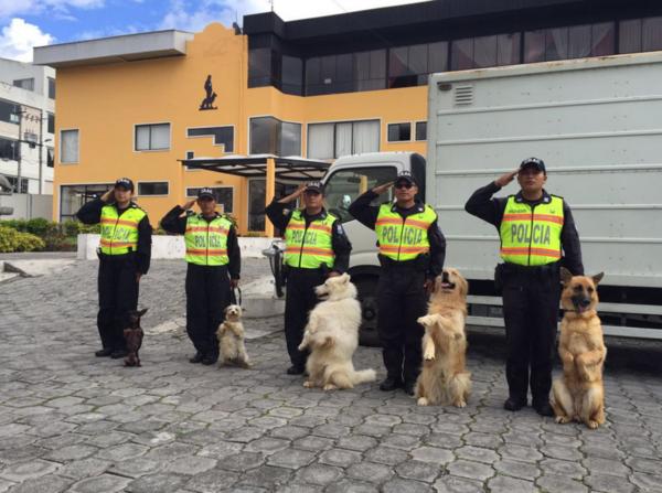 perros_policia_Ecuador