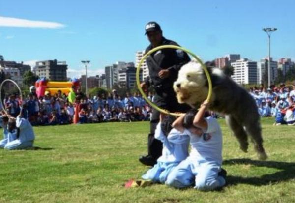 perros_policia_Ecuador2