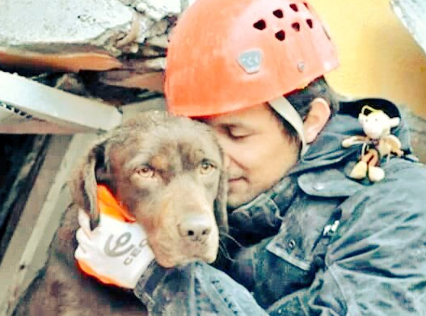 perro_rescatado