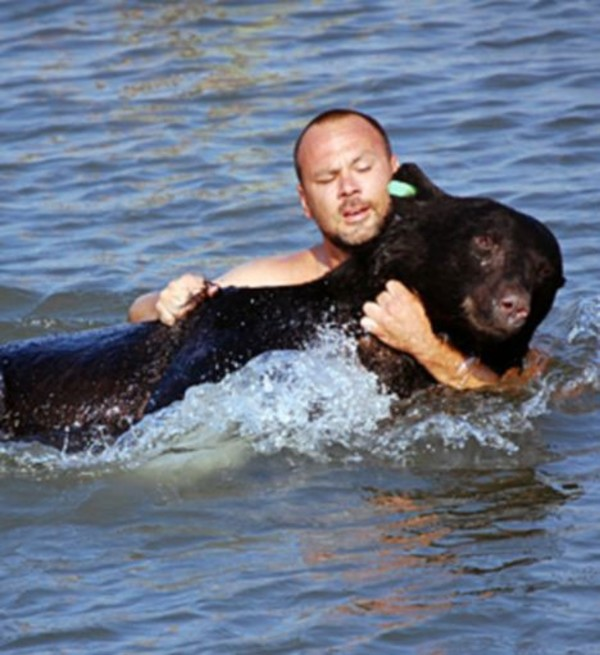 drowning-bear-rescue-8