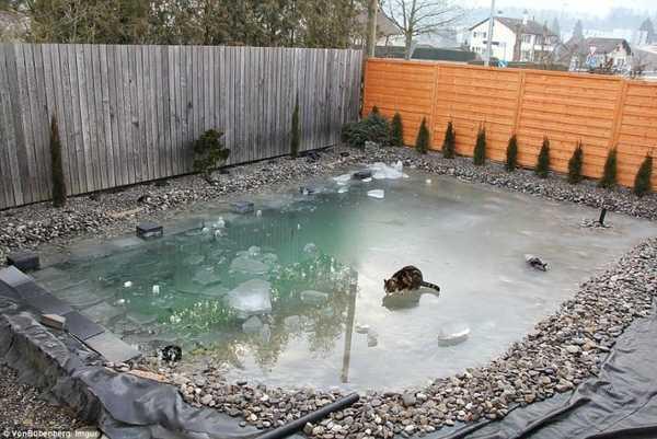 pool-6-850x568