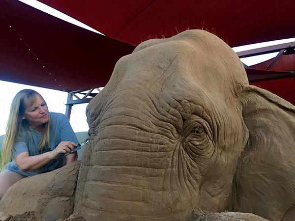 elefant8