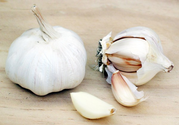 garlic-600x419