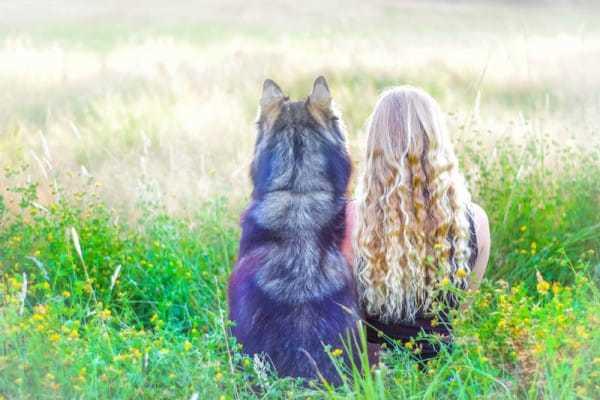 wolfe9