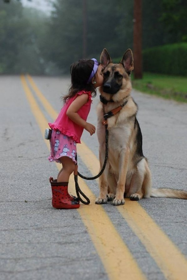 dog-1-1-600x895
