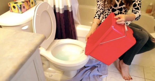toilet-5-600x315