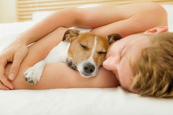 7 overraskende grunde til hvorfor, du bør sove med din hund i sengen hver nat