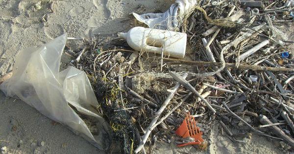 Plastpåse i naturen