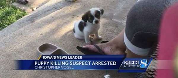 Image result for Christopher, 25, breaks puppy's neck – as revenge for not getting Wi-Fi password